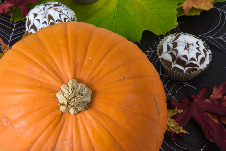 Close-up of the top of a pumpkin and halloween cupcakes : Free Stock Photo