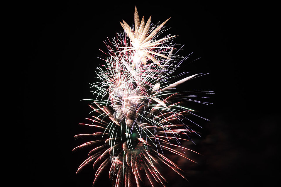 Fireworks in a night sky : Free Stock Photo