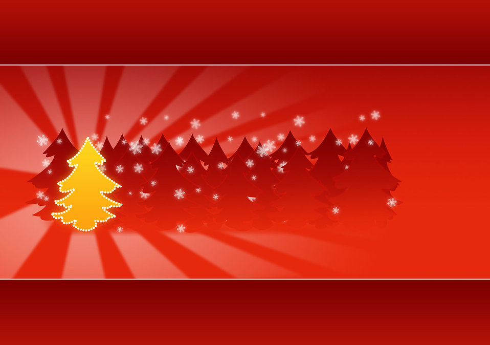 A yellow Christmas tree background : Free Stock Photo