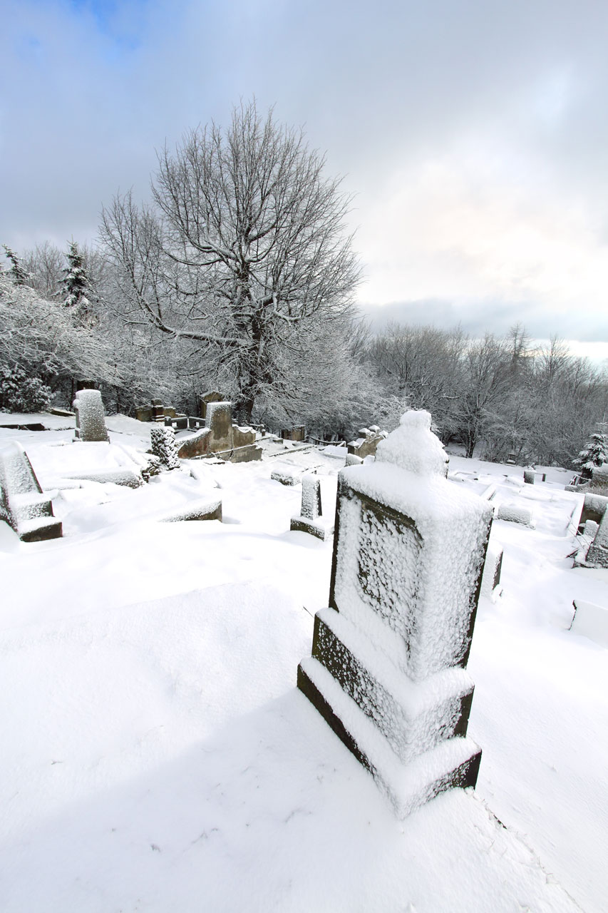 A gravestone in a cemetery in winter with snow : Free Stock Photo