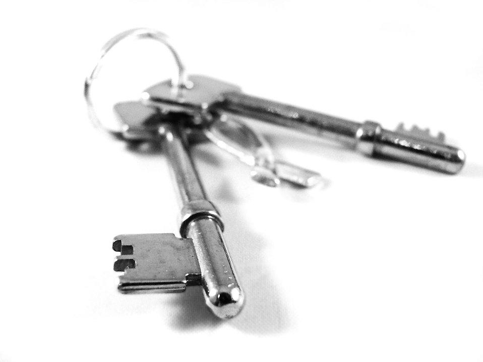A set of keys isolated on a white background : Free Stock Photo