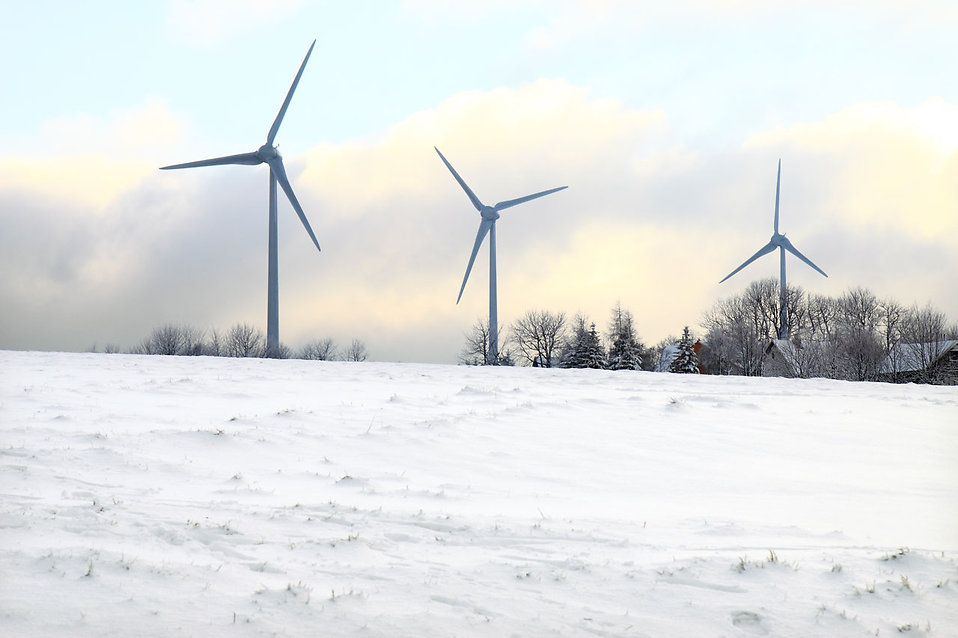 Wind turbines in winter : Free Stock Photo