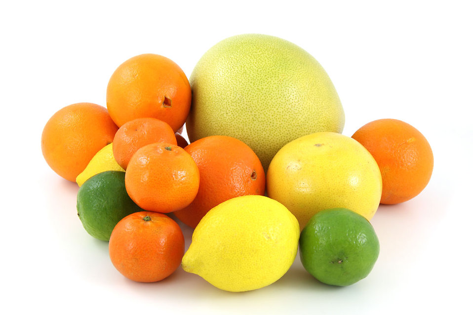 A pile of citrus fruit isolated on a white background : Free Stock Photo