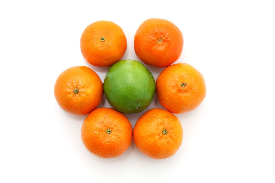 Citrus fruit isolated on a white background.