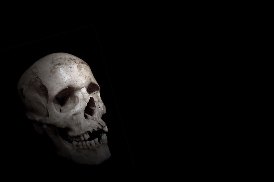 skull free stock photo a human skull on a black background 9367