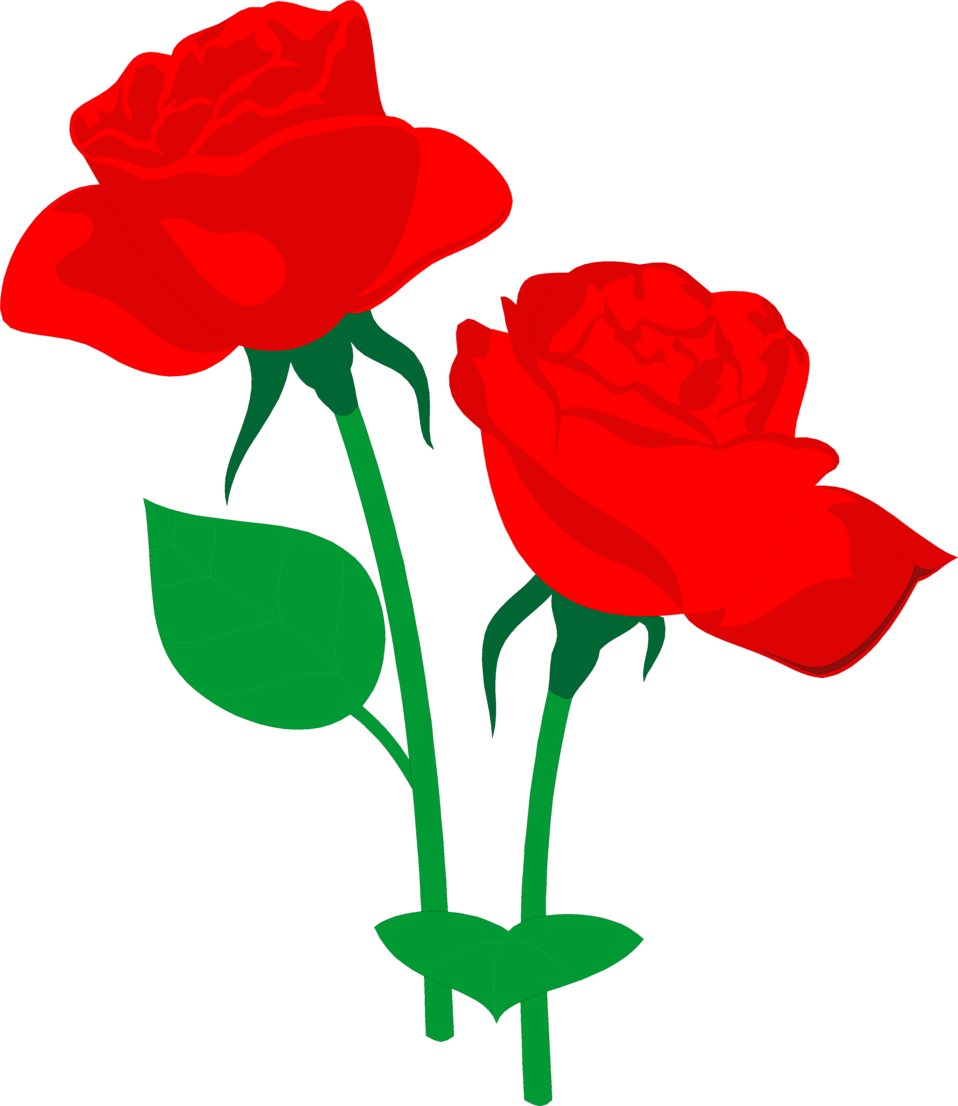 Illustration of two red roses : Free Stock Photo