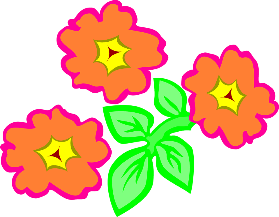 Illustration of orange flowers : Free Stock Photo