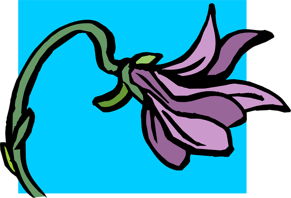 Illustration of a purple flower : Free Stock Photo
