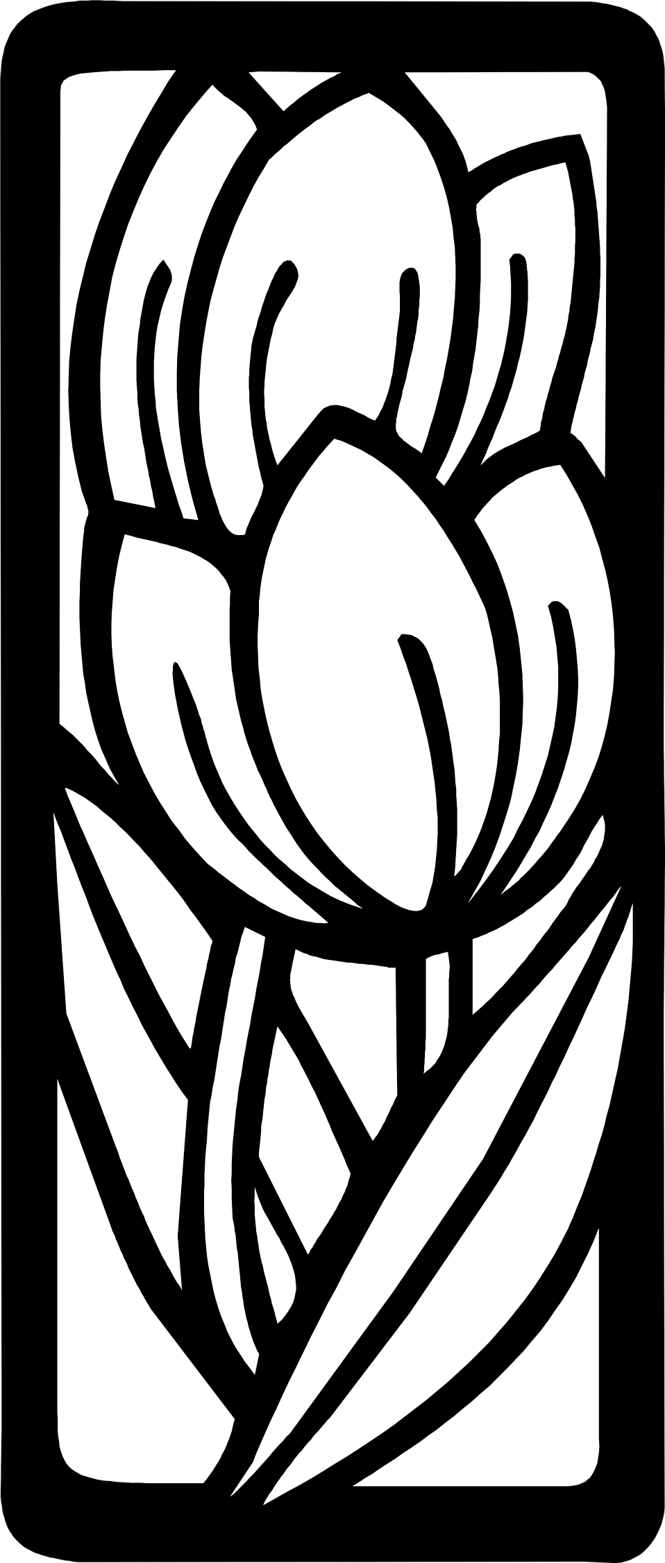 Illustration of outlines of tulip flowrs : Free Stock Photo
