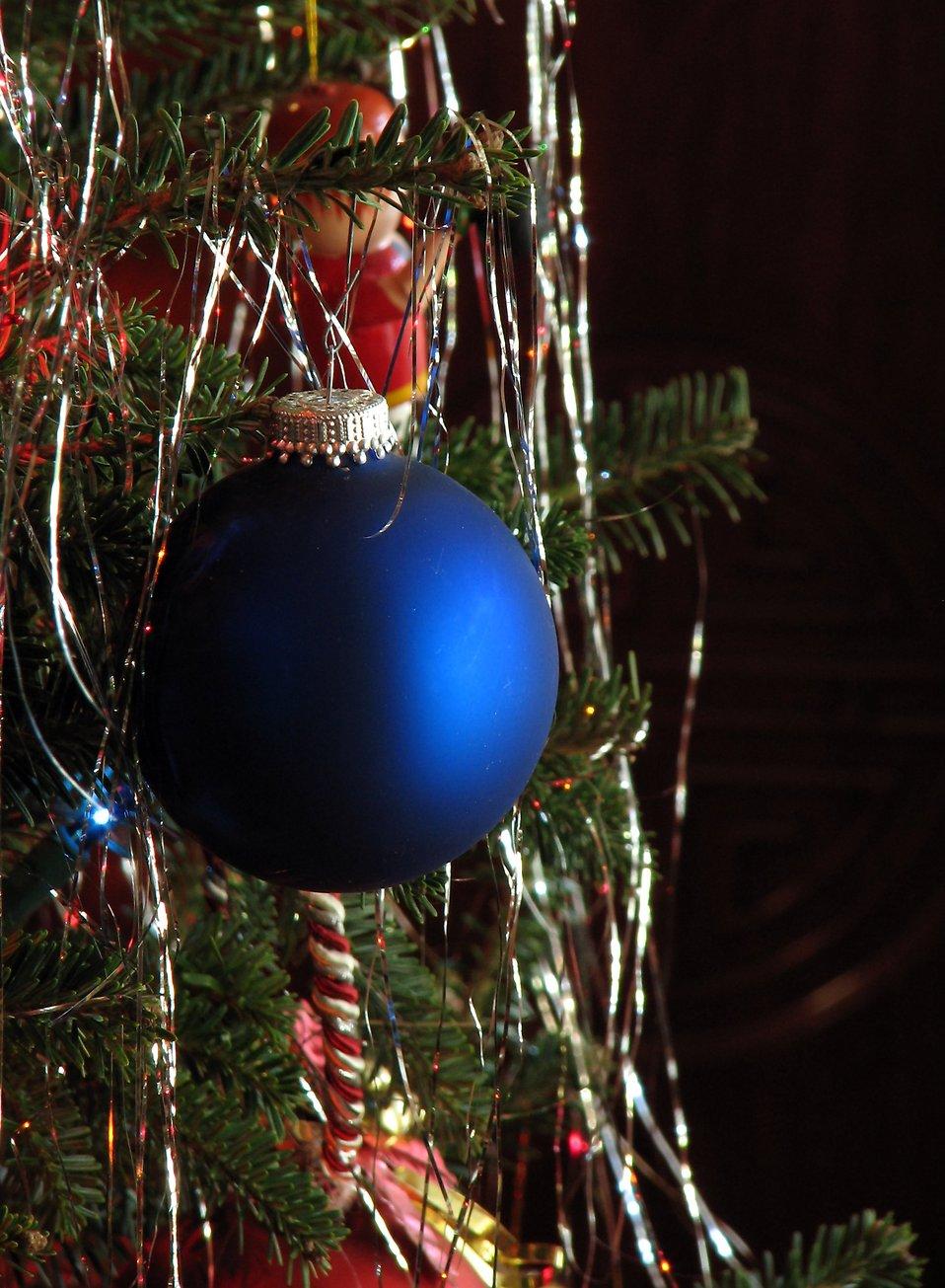 A blue Christmas ornament on a tree : Free Stock Photo
