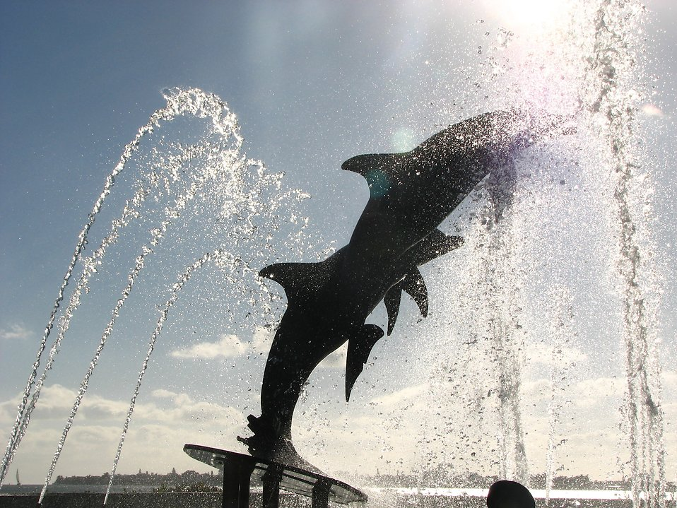 The dolphin fountain at Bayfront Park in Sarasota, Florida : Free Stock Photo