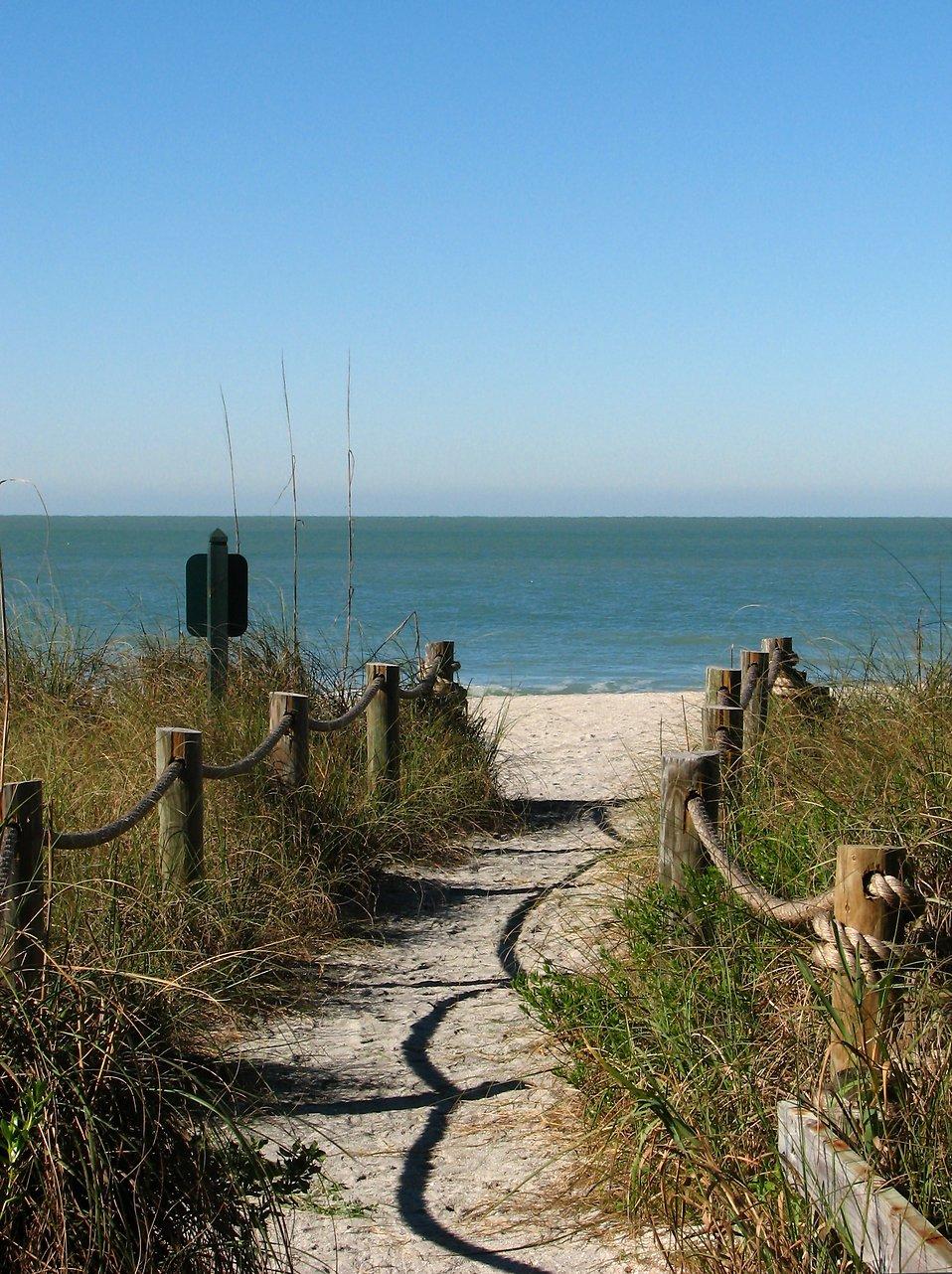 A path heading to the beach : Free Stock Photo