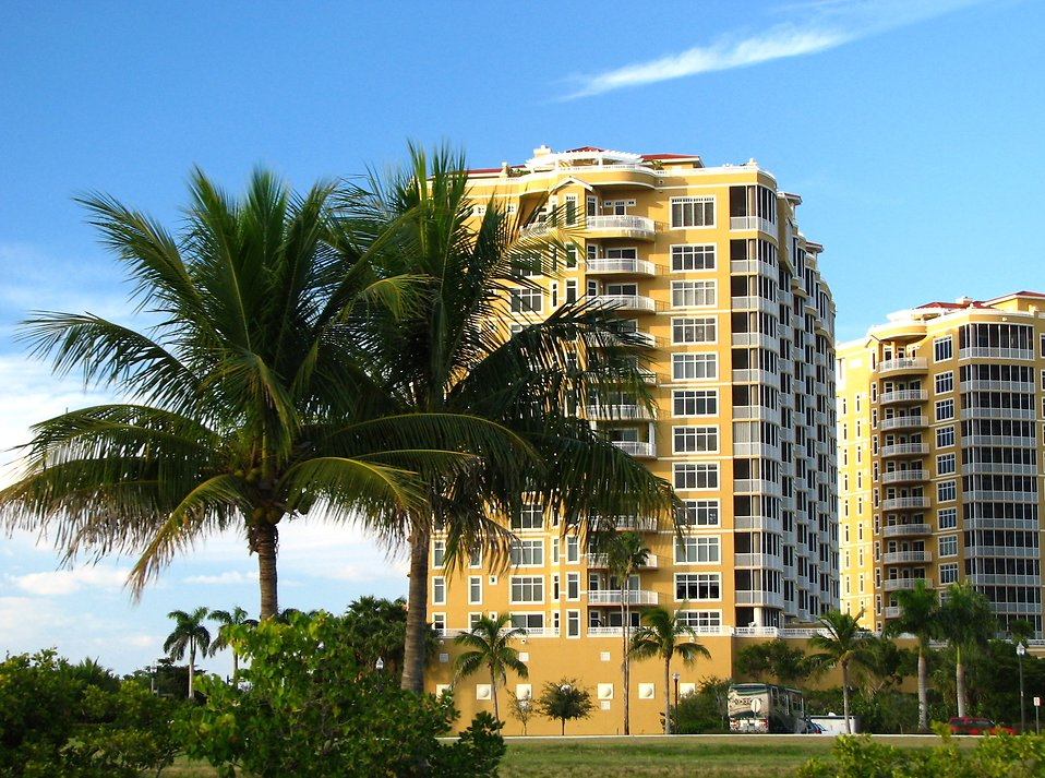 Condos along the ocean with palm trees.