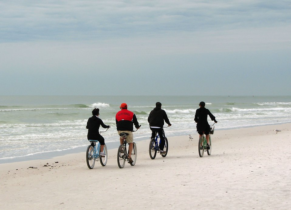 People riding bikes on the beach by the ocean : Free Stock Photo