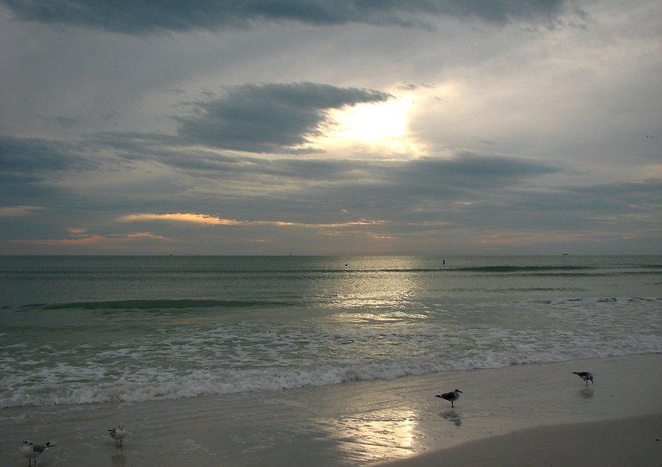An ocean sunset : Free Stock Photo