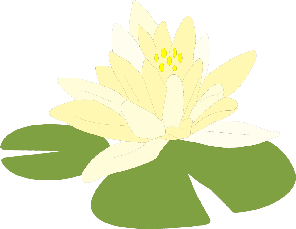 Illustration of a flower on a lily pad : Free Stock Photo
