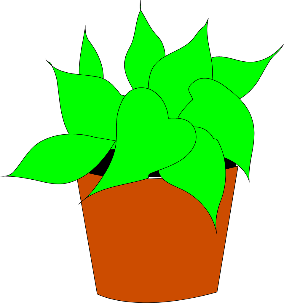 Illustration of a potted house plant : Free Stock Photo