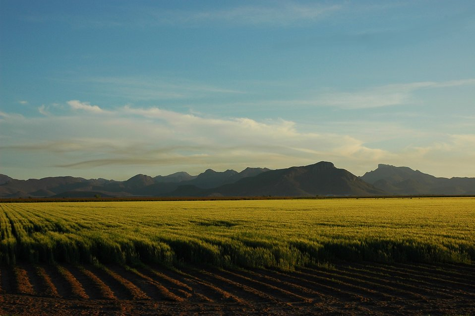 Farm fields with mountains in the background landscape : Free Stock Photo