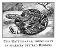 Free Stock Photo: Vintage illustration of a rattlesnake