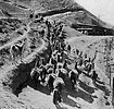 Free Stock Photo: Vintage photo of llamas carrying ore from a mine