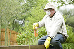 Free Stock Photo: A man spraying a pesticide on some plants in his garden