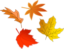 Free Stock Photo: Illustration of colorful autumn leaves