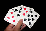 Free Stock Photo: A hand holding the four eights in a standard deck of cards