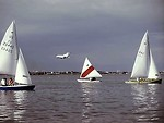 Free Stock Photo: Sailboats on the ocean