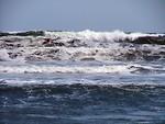 Free Stock Photo: Ocean waves
