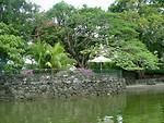 Free Stock Photo: Tropical river bank
