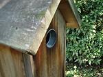 Free Stock Photo: Birdhouse