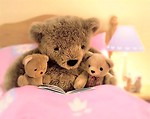 Free Stock Photo: Teddy bears in a pink bed