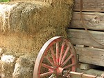 Free Stock Photo: Inside of barn with wooden wheel and hay