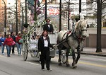Free Stock Photo: A horse and carriage in the 2010 Atlanta Saint Patrick's Day Parade