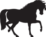 Free Stock Photo: Illustration of a horse silhouette