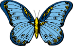 Free Stock Photo: Illustration of a blue butterfly