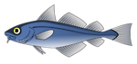 Free Stock Photo: Illustration of a blue codfish