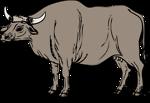 Free Stock Photo: Illustration of a gaur
