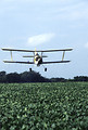 Free Stock Photo: A cropduster spraying insecticide of a soybean field