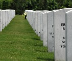 Free Stock Photo: Close-up of gravestones in a row at the Georgia National Cemetery