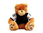 Free Stock Photo: A teddy bear in a football jersey