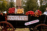 Free Stock Photo: An apple cart in autumn