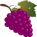 Free Stock Photo: Illustration of a bunch of grapes