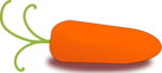Free Stock Photo: Illustration of an orange carrot