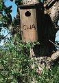 Free Stock Photo: A birdhouse
