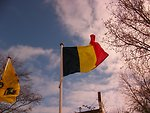 Free Stock Photo: Belgian flag