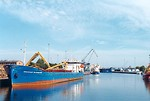Free Stock Photo: Boats in a harbour with a blue sky