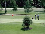 Free Stock Photo: A group of men analyzing a golf putt