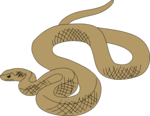 Free Stock Photo: Illustration of a brown snake