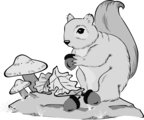 Free Stock Photo: Illustration of a squirrel holding an acorn